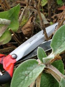 Using Jakoti Hand Shears for Garden Maintenance